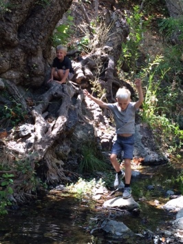 To be wild and free boys only need some water, rocks and trees. My adorable grandsons this weekend.